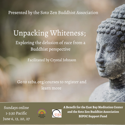 Unpacking Whiteness:  Exploring the Delusion of Race From a Buddhist Perspective